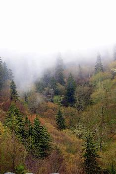 Marty Koch - Smoky Mount Vertical