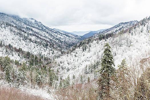 Smoky Mountain Winter Scene I by Bill Swindaman