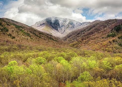Smoky Mountains Spring Landscape by Bill Swindaman