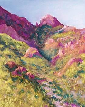 Smuggler's Gap Canyon by Candy Mayer