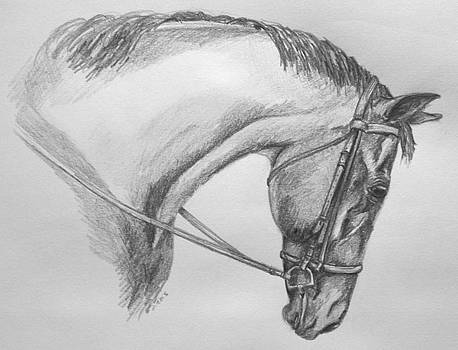 Snaffle by Donna Teleis