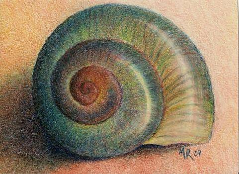 Snail Shell by Mary Rogers