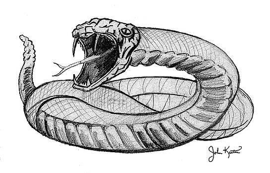 Snake by John Keaton