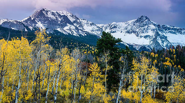 Sneffels Range in the Fall - Colorado by Gary Whitton