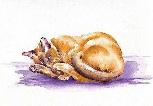 Snooze by Debra Hall