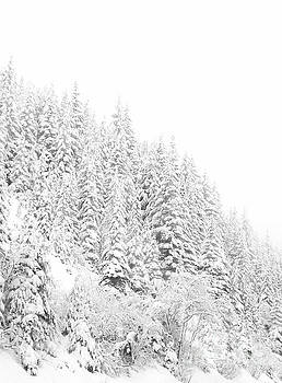 Snoqualmie Pass by Ann Johndro-Collins