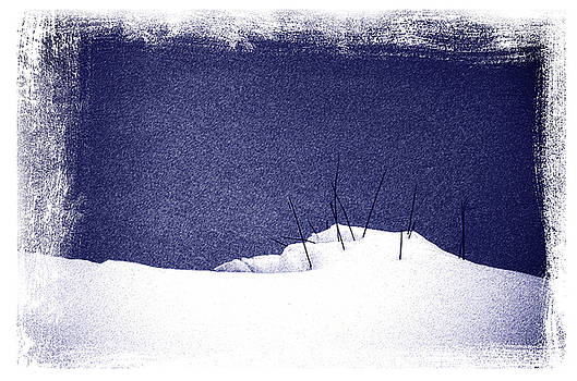 Snow and Grass by Mark Wagoner