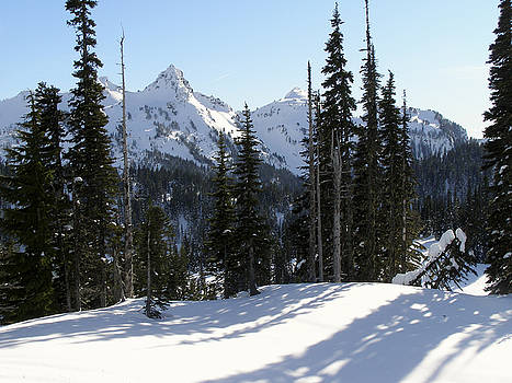Snow and Shadows on the Mountain by Jane Eleanor Nicholas