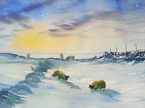 Snow and Sheep on the Moors by Glenn Marshall