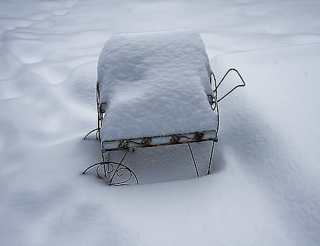 Snow Cart IMG_2658 by Torrey E Smith