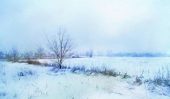 Snow Field by John Rivera