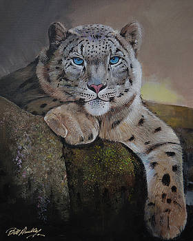 Snow Leopard at Rest by Bill Dunkley