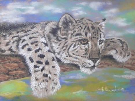 Snow Leopard Cub by Charles Hubbard