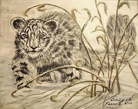 Snow Leopard by Cynthia Farmer