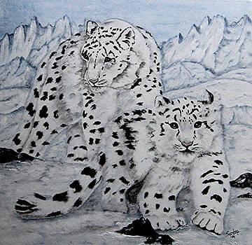 Snow Leopards by Sandra Maddox