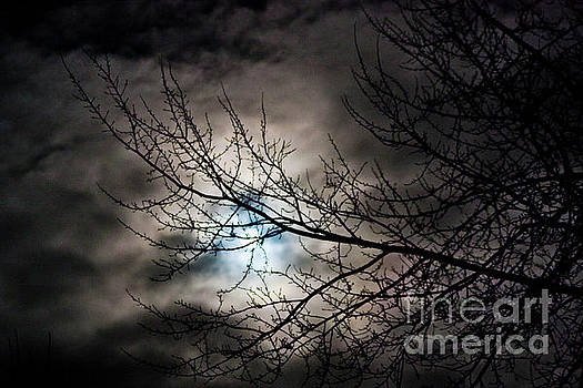 Snow Moon 1 by Janie Johnson