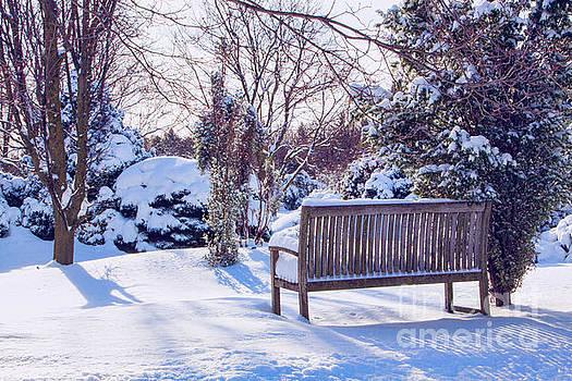 Snow Seat by Marilyn Cornwell