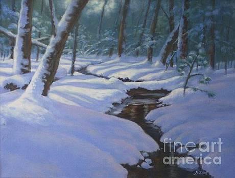 Snow Shadows by Hillary Scott