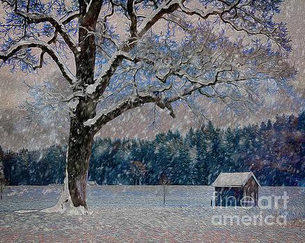 Snow Time by Edmund Nagele