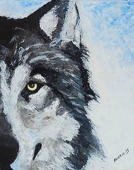 Snow Wolf by Edwin Alverio