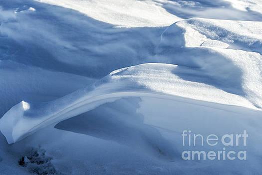 Snowdrift Structure by Angela DeFrias