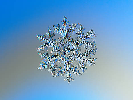 Snowflake photo - Gardener's dream by Alexey Kljatov