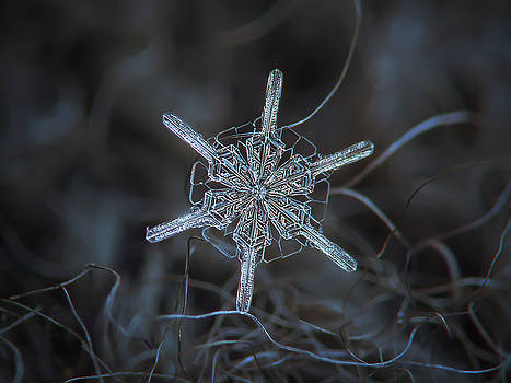 Snowflake photo - Steering wheel by Alexey Kljatov