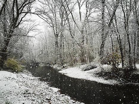 Snowing on White Lick Creek by Dan McCafferty
