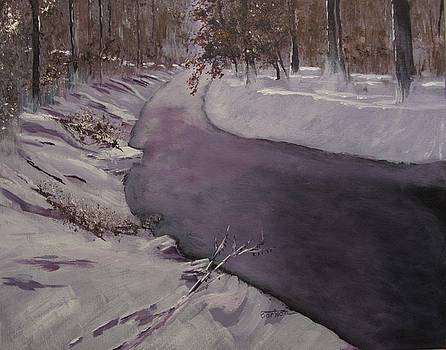Snowy Creek 1 by David Bartsch