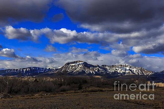 Snowy Ear Mountain by John Lee