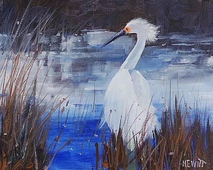 Snowy Egret by Philip Hewitt