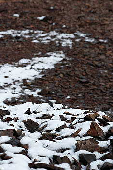 Snowy Path by Preston Zeller