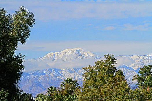 Snowy Peaks by Shoal Hollingsworth