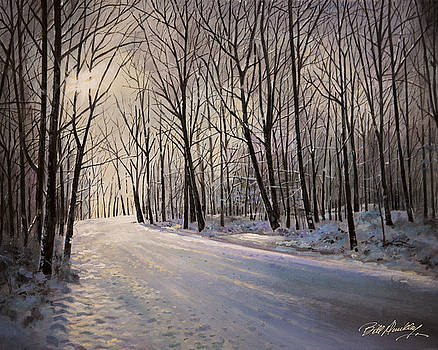 Snowy Winter Wonderland by Bill Dunkley