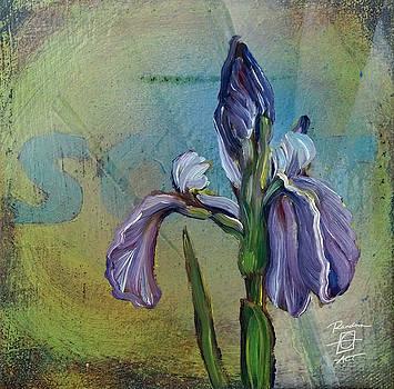 Soar Iris by Andrea LaHue