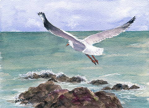 Soaring Gull by Suzanne Krueger