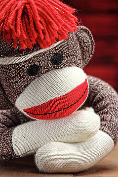Sock Monkey 2 by Vicki McLead