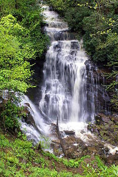 Marty Koch - Soco Falls 1