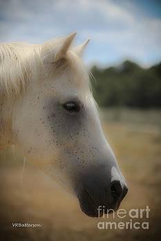 Soft Profile by Veronica Batterson