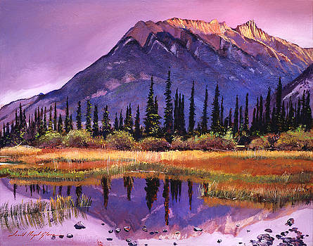 Soft Shades Of Reflections by David Lloyd Glover