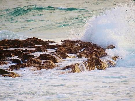 Softly Crashing by E Luiza Picciano