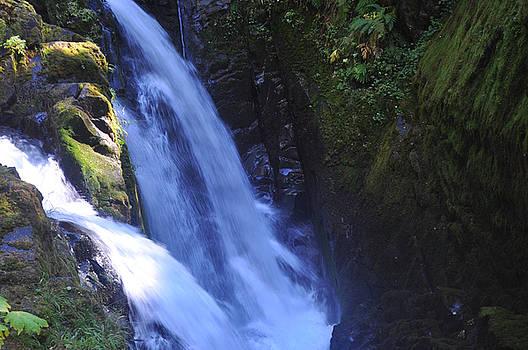 Sol Duc Falls by Lynn Bawden
