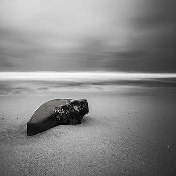 Solace I by Ryan Weddle