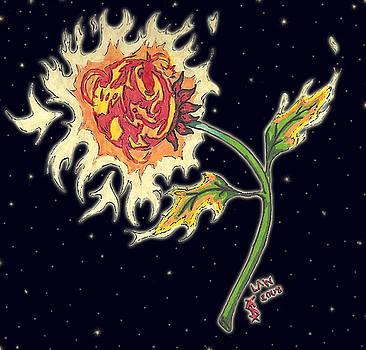 Solar Sun Flower by Law Stinson
