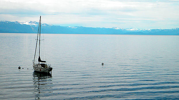 Frank Wilson - Solitary Sailboat