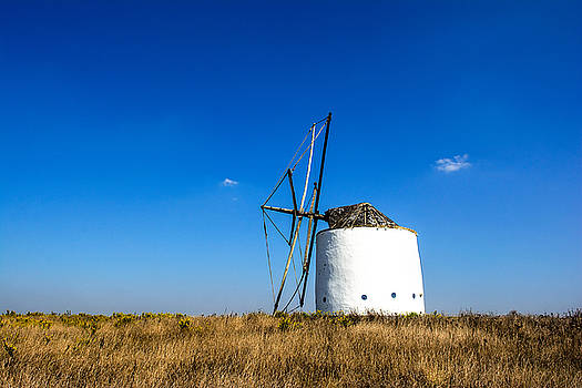 Solitary Windmill by Marion McCristall