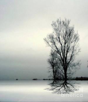 Solitude by Elfriede Fulda