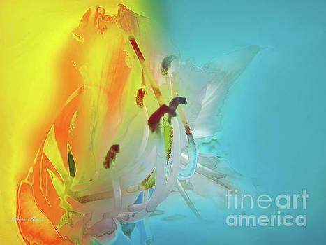 Sombras de Luz by Alfonso Garcia