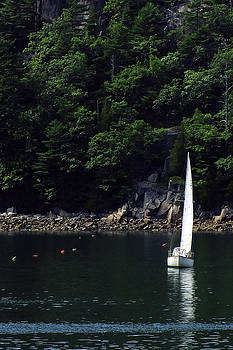 Somes Sound Sailing by Bill Morgenstern