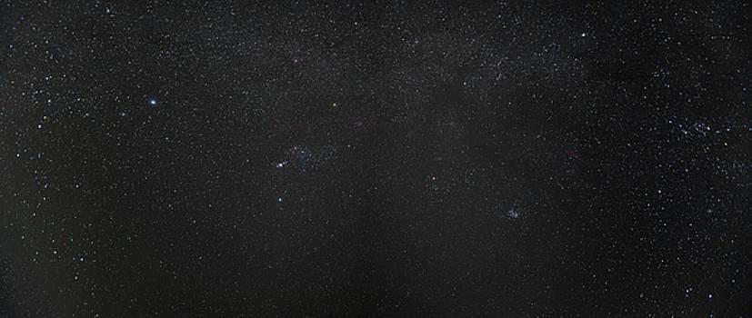 Sonaran Desert Stars by Steve Gadomski